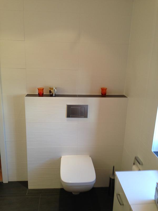 Badsanierung Standard Toilette